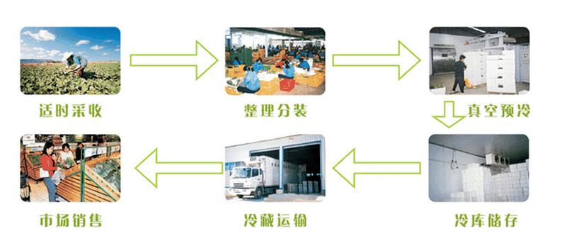 预冷机在园艺产品中的应用